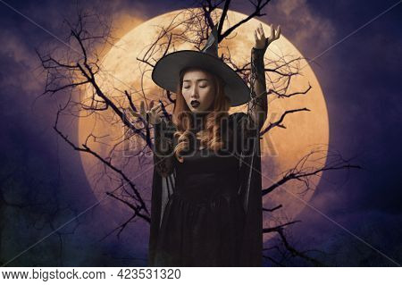 Mystery Halloween Witch Standing Over Dead Tree, Full Moon And Spooky Cloudy Sky, Halloween Mystery