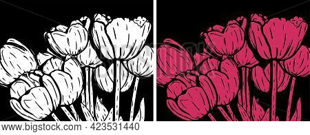 Vector Illustration Of White And Pink Tulips On A Black Background. Modern Floral Wall Art.