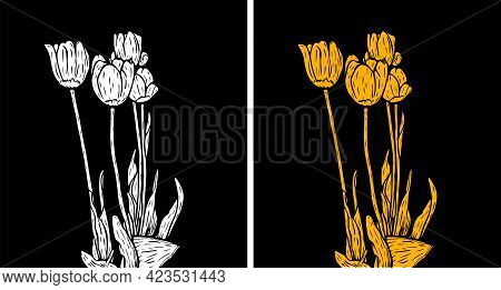 Vector Illustration Of White And Yellow Tulips On A Black Background. Modern Floral Wall Art.