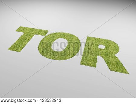 The German Word Goal With A Lawn Texture On A White Background, 3d Rendering