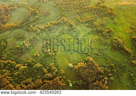 Aerial View Green Forest Woods Park And Creek Stream Landscape In Summer Evening. Top View Of Beauti