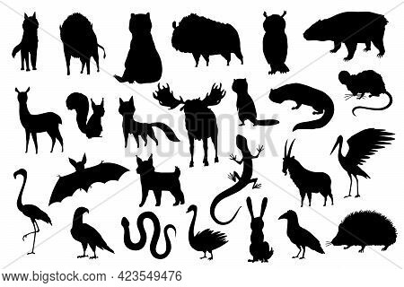 Silhouette Animals Of Europe. Nature Fauna Collection. Geographical Local Fauna. Mammals Living On C