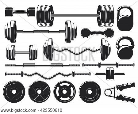 Gym Heavy Weight Equipment. Fitness Dumbbell And Barbell Silhouettes, Bodybuilding Heavy Weight Vect