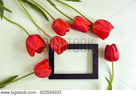 Fresh Red Tulips And Rectangular Black Wooden Frame On Light Green Background. Top View. Close-up. C