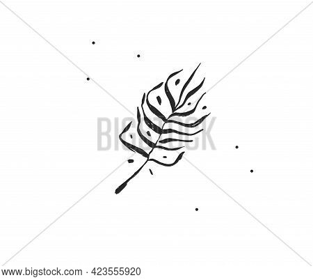 Hand Drawn Vector Abstract Stock Flat Graphic Illustration With Logo Element Of Tropical, Black Exot