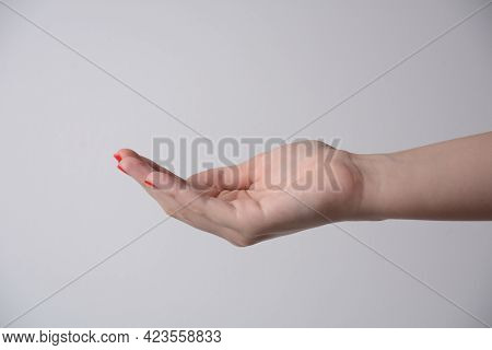 Open Palm Hand Gesture Of Female Hand. Isolated On White Background. Outstretched Female Hand,  Keep