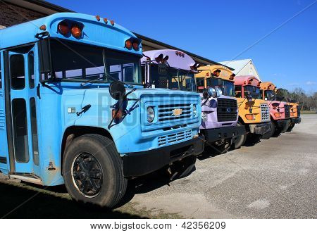 Rainbow Colored School Busses