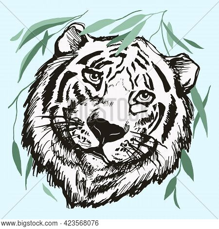 Tiger Head On A White Isolated Background, Derawn Black Contour.,line Art. Graphics Vector Illustrat