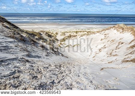 Coastal Dune, Wild Grass With The Beach And The Calm Sea In The Background, Sunny Day With A Blue Sk