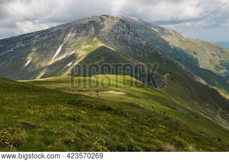 Beautiful Spring View From Monte Bove Sud With Green Meadow In The National Park Of Monti Sibillini,