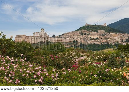 Awesome View Of Assisi Medieval Town From The Rose Garden In Umbria, Italy