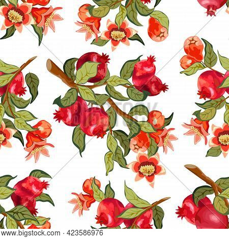 Branches With Pomegranates In A Pattern.branches With Pomegranates On A White Background In A Colore