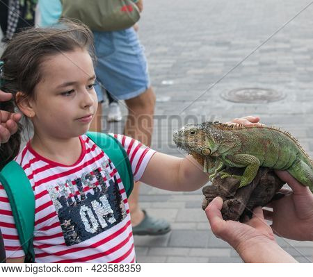 Dnepropetrovsk, Ukraine - 06.12.2021: A Young Girl Holds A Green Iguana In Her Arms. Emotions Of A C