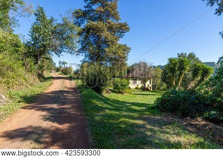 Dirty Road And A Small House And Garden With Grass, Flowers And Trees
