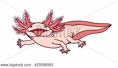 Cute Funny Axolotl With Red Gills, Shows Pink Tongue, Amphibian Animal, Aquarium Pet, Color Vector I