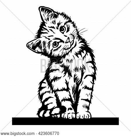 Cat, Peeking Kitten - Cheerful Kitty Isolated On White - Vector Stock