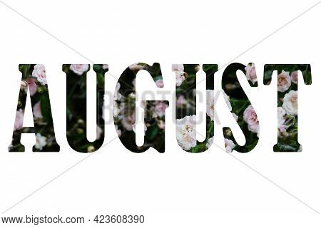 Word August Made Of Leaves And Flowers On White Background. Creative Photo