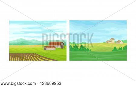 Country View With Sown Field, House And Pasture Land As Green Landscape Vector Set