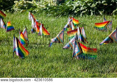 Little rainbow colored  pride flags on green grass