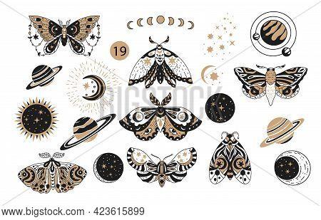 Bohemian Boho Butterfly Decorative Vector Logo Set. Moth Wildlife Alchemy Icon Symbol, Tattoo Graphi