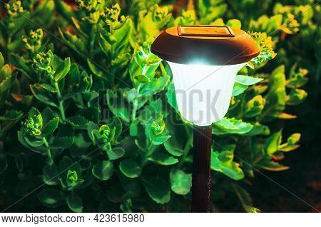 Decorative Small Solar Garden Light, Lantern In Flower Bed. Garden Design. Solar Powered Lamp. Solar