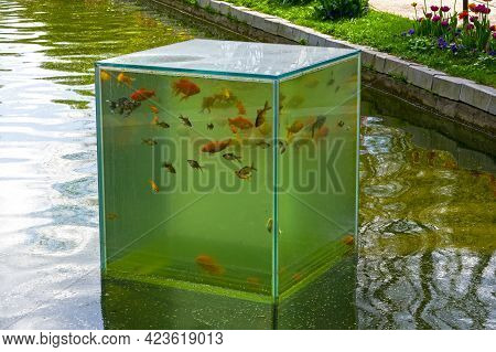 Moscow, Russia - May 16, 2021: An Unusual Aquarium - A Bottomless Glass Cube On The Surface Of A Pon