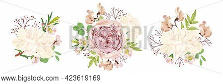 Set Of Vector Floral Bouquets. Peony Rose, White Carnation, Chamelaucium, Lathyrus, Eucalyptus, And