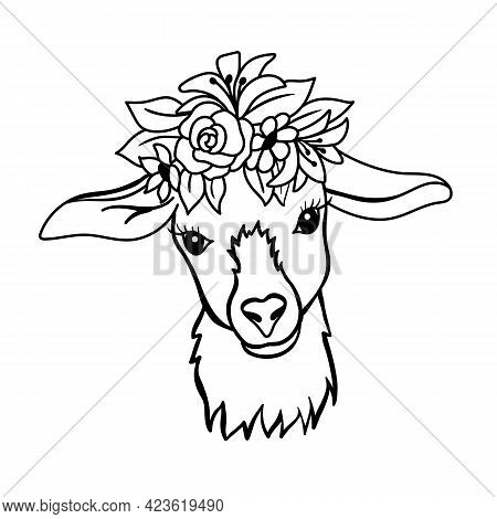 Young Goat With Flowers On Head. Black And White Illustration In Outline Style. Vector Cute Goat Fac