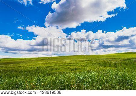 Beautiful Sicilian Landscape, Mazzarino, Caltanissetta, Sicily, Italy, Europe
