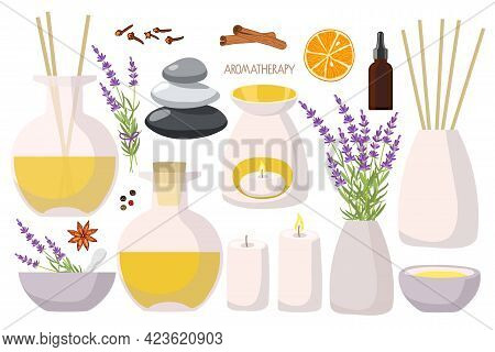 Set Of Home Fragrance Kit. Aroma Diffusers, Essential Oil In Bottle, Lavender Plant, Balance Stones,