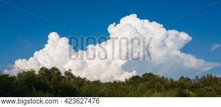 A Large White Cumulonimbus Cloud Emerges Behind The Forest Canopy On Blue Sky
