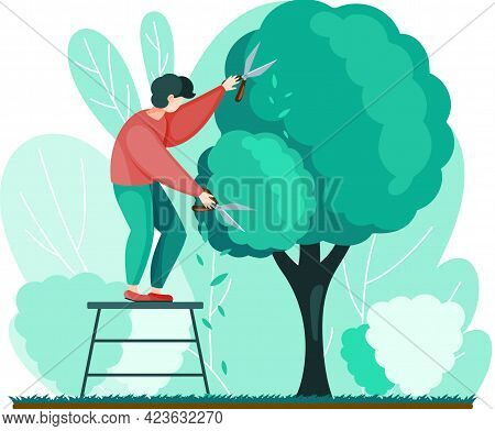 Man Shears Plants With Scissors Stands On Stairs. Professional Garden Worker Working With Tree In Ba