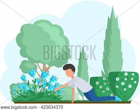 Guy Gardening Plants On Backyard Flowers On Beautiful Flower Bed, Enjoying Tulips In Spring Garden.
