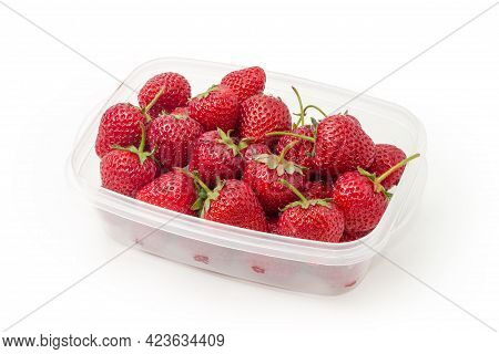 Freshly Harvested  Ripe Dark Red Garden Strawberries With Tails In Small Translucent Food Container