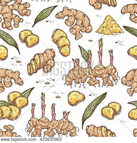 Seamless Pattern With Ginger Root, Pieces, Dried Condiment And Leaves.