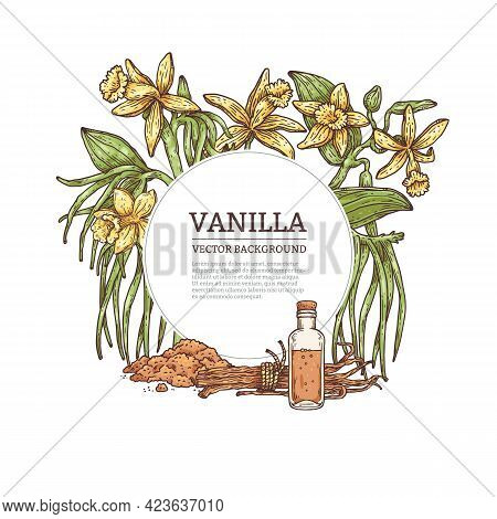 Vanilla Background Or Frame With Banner For Text, Engraved Vector Illustration.