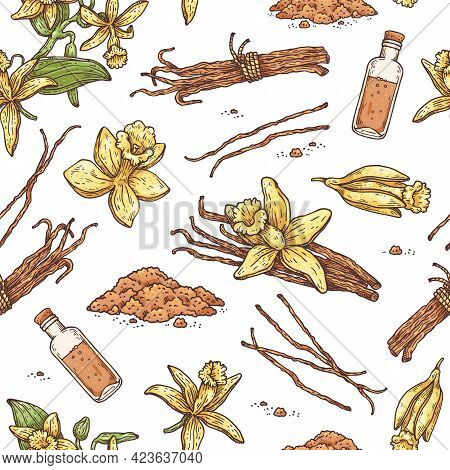 Seamless Pattern With Vanilla Plant Parts, Flowers And Oil Vector Illustration.