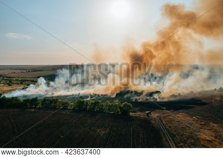 Forest And Field Fire With Smoke Aerial View, Burning Dry Grass And Trees, Natural Disaster.