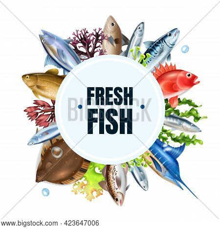 Sea Fish Realistic Round Composition With Different Types Symbols Vector Illustration