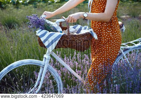Provence - Girl At The Lavender Field