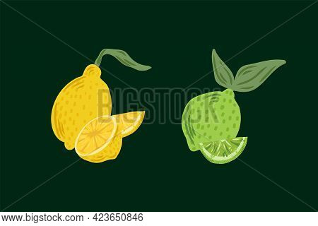 Vector Of Juicy Citrus Fruits. Illustration Of Lemon And Lime For The Summer Design Of The Restauran
