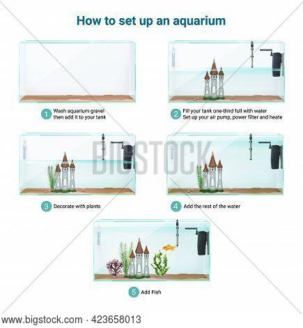Fish Tank Aquarium Setup Realistic Infographic Guide Steps Cleaning Adding Gravel Water Air Pump Fil