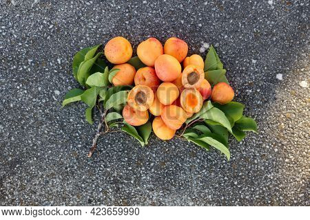 Ripe Apricots And Green Apricot Leaves On A Gray Background. Whole Apricots And Apricot Halves