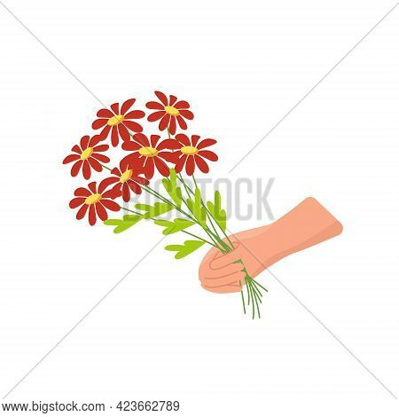 Bouquet Of Daisies In Hand, Vector Clipart In Flat Style Isolated, Cartoon
