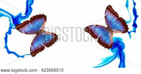 Colorful Tropical Blue Morpho Butterflies On Abstract Blue Paint Stains Background