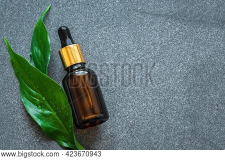 Serum Bottle And Green Leaves On Gray Stone Background, Copy Space. Essential Oil, Fluid, Plant Extr