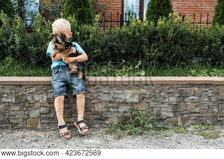 Boy With Yorkshire Terrier Dog Puppy. Cute Baby Boy Hugs York Terrier Puppy And Siting On Green Gras
