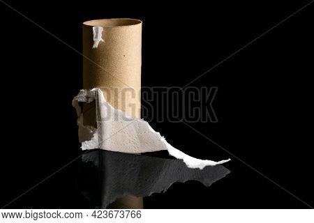 Cardboard Sleeve From A Roll Of Toilet Paper. The Rest Of The Paper. On A Black Background With A Re