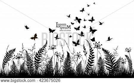 Floral Horizontal Background With Silhouettes Of Fern, Flowers And Butterflies. Spring Or Summer Bac