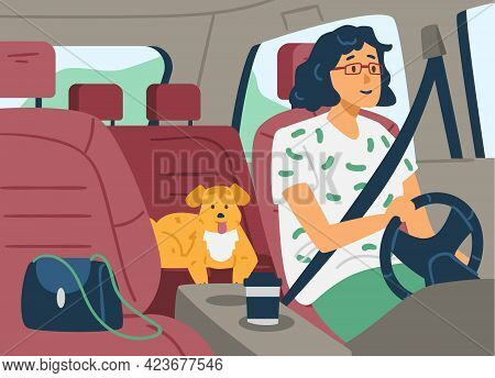 Woman Inside Car Driving With Seat Belts Fastened, Flat Vector Illustration.